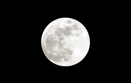 Bluemoon12-29-09slw