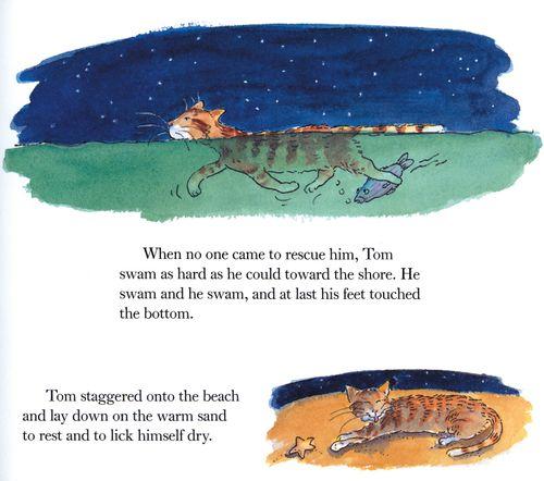 Tom Foolery's Swim