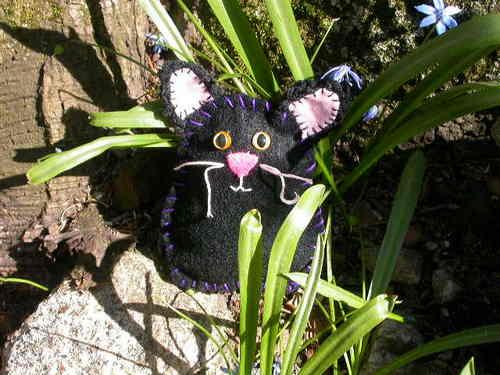 Black Cat Millie